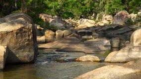 Δύσκολος ποταμός στο τροπικό δάσος στο βουνό ζουγκλών Καθαρό νερό ρευμάτων που ρέει στο δύσκολο ποταμό στις δασικές άγρια περιοχέ απόθεμα βίντεο
