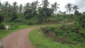 Δύσκολος στενός τραχύς άνεμος τραχύς δρόμος βουνών στην αγροτική πόλη φιλμ μικρού μήκους