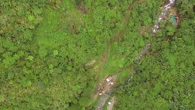 Δύσκολος τραχύς δρόμος με πολλ'ες στροφές βουνών κορεσμένος με τα φυσικά αυξημένα δέντρα απόθεμα βίντεο