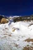 δύσκολος χειμώνας βουν στοκ εικόνες με δικαίωμα ελεύθερης χρήσης