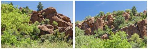 Δύσκολο κολάζ μπλε ουρανού δέντρων εκτάσεων ερήμων mesquite Στοκ φωτογραφίες με δικαίωμα ελεύθερης χρήσης