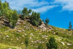 Δύσκολο Hill Altai, νότια Σιβηρία, Ρωσία στοκ εικόνες με δικαίωμα ελεύθερης χρήσης