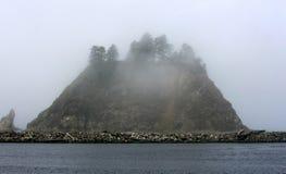 Δύσκολη αιχμή με τα δέντρα έλατου στην ομίχλη, παραλία ώθησης Λα Στοκ Εικόνες