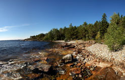 Δύσκολη ακτή με το δάσος Στοκ εικόνες με δικαίωμα ελεύθερης χρήσης