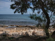 Δύσκολη παραλία ημέρας Suny Στοκ Φωτογραφίες