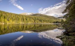 Δύσκολη Finch πάρκων βουνών εθνική λίμνη Στοκ Εικόνες