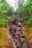 Δύσκολος δρόμος στο βουνό Στοκ Φωτογραφίες
