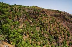 Δύσκολο τοπίο στο νησί EL Hierro, Κανάριο νησί, Ισπανία Στοκ εικόνα με δικαίωμα ελεύθερης χρήσης
