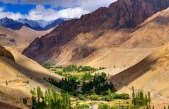 Δύσκολο τοπίο Ladakh, της πράσινης κοιλάδας, του φωτός και της σκιάς, Jammu & του Κασμίρ, Leh, Ινδία Στοκ εικόνα με δικαίωμα ελεύθερης χρήσης