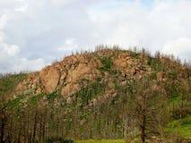 Δύσκολο Hill Στοκ Εικόνα