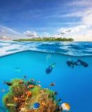 Δύτες κάτω από την επιφάνεια νερού που ερευνά τη ζωή θάλασσας Στοκ εικόνες με δικαίωμα ελεύθερης χρήσης