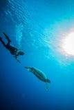 Δύτης και χελώνα πράσινης θάλασσας σε Derawan, Kalimantan, υποβρύχια φωτογραφία της Ινδονησίας Στοκ Εικόνα