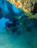 Δύτης σκαφάνδρων που κολυμπά μέσω της σπηλιάς στοκ φωτογραφία με δικαίωμα ελεύθερης χρήσης