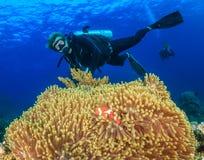 Δύτης ΣΚΑΦΑΝΔΡΩΝ δίπλα σε ένα μεγάλο anemone και clownfish Στοκ εικόνες με δικαίωμα ελεύθερης χρήσης