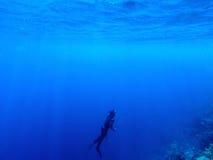 Δύτης υποβρύχιος στη βαθιά μπλε θάλασσα Το άτομο στο εργαλείο κατάδυσης βουτά μέχρι την επιφάνεια νερού Στοκ εικόνες με δικαίωμα ελεύθερης χρήσης