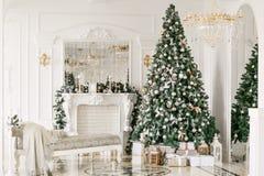 Δώρα στο χριστουγεννιάτικο δέντρο Χριστουγέννων δασικός knurled ευρύς χειμώνας ιχνών πρωινού χιονώδης κλασικά πολυτελή διαμερίσμα Στοκ Εικόνες