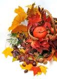 Δώρα του φθινοπώρου Στοκ φωτογραφία με δικαίωμα ελεύθερης χρήσης