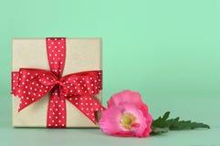 Δώρο επετείου και ένα λουλούδι Στοκ Φωτογραφίες