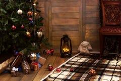 Δώρο και αντικείμενα Χριστουγέννων κάτω από το δέντρο έλατου Στοκ φωτογραφία με δικαίωμα ελεύθερης χρήσης