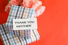 Δώρο και ρόδινο λουλούδι γαρίφαλων για την ημέρα της μητέρας Στοκ φωτογραφίες με δικαίωμα ελεύθερης χρήσης