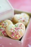 δώρο μπισκότων κιβωτίων Στοκ εικόνες με δικαίωμα ελεύθερης χρήσης