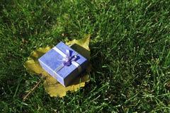 δώρο s φθινοπώρου Στοκ εικόνα με δικαίωμα ελεύθερης χρήσης