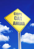 Γάτα αντιγράφων μπροστά Στοκ εικόνες με δικαίωμα ελεύθερης χρήσης
