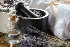 λείανση και συντριβή ξηρό lavender με ένα κονίαμα στοκ εικόνες με δικαίωμα ελεύθερης χρήσης