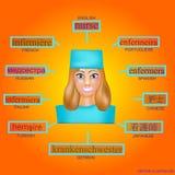 Είδωλο μιας γυναίκας στην επαγγελματική μορφή νοσοκόμας Εικόνα για την εκμάθηση της νοσοκόμας λέξης στα αγγλικά, γερμανικά, γαλλι Στοκ φωτογραφία με δικαίωμα ελεύθερης χρήσης