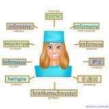 Είδωλο μιας γυναίκας στην επαγγελματική μορφή νοσοκόμας Εικόνα για την εκμάθηση της νοσοκόμας λέξης στα αγγλικά, γερμανικά, γαλλι Στοκ Φωτογραφία