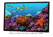 Είναι ένα Clinger όχι ένας κολυμβητής διανυσματική απεικόνιση