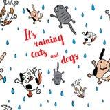 Είναι βρέχοντας κάρτα φθινοπώρου γάτες και σκυλιά Στοκ εικόνα με δικαίωμα ελεύθερης χρήσης