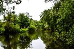 Είναι καλημέρα στη φύση Στοκ φωτογραφίες με δικαίωμα ελεύθερης χρήσης