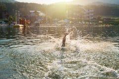 Είναι καλοκαίρι Στοκ φωτογραφία με δικαίωμα ελεύθερης χρήσης