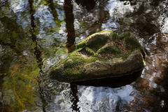 Είναι ο βράχος Στοκ εικόνα με δικαίωμα ελεύθερης χρήσης