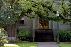 Είσοδος οικοδόμησης με το δέντρο σφενδάμνου Στοκ Εικόνα