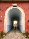 Είσοδος στον παλαιό τοίχο Στοκ Εικόνες