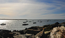 Είσοδος πλήθους αλιευτικών σκαφών στον κόλπο Tillamook Στοκ Εικόνα