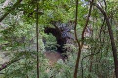 Είσοδος σπηλιών στο πάρκο Μαδαγασκάρη Ankarana Στοκ Φωτογραφίες