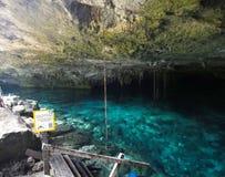 Είσοδος στα ojos DOS cenote Στοκ εικόνες με δικαίωμα ελεύθερης χρήσης