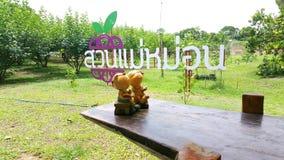 Είσοδος στο αγρόκτημα μουριών στοκ εικόνες με δικαίωμα ελεύθερης χρήσης