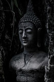 Είδωλο του Βούδα στο παλαιό δέντρο Στοκ φωτογραφία με δικαίωμα ελεύθερης χρήσης