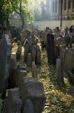 εβραϊκός παλαιός νεκροταφείων Στοκ Εικόνες