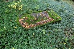 Εβραϊκό νεκροταφείο Στοκ Εικόνα