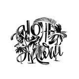 Εγγραφή της Χαβάης Aloha Στοκ Εικόνες