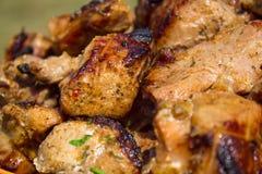 Εγκάρδιο κρέας υπαίθρια Στοκ Εικόνα