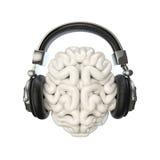 Εγκέφαλος ακουστικών Στοκ Φωτογραφίες