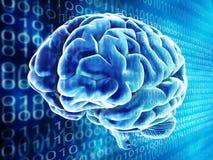εγκέφαλος ανασκόπησης Στοκ εικόνα με δικαίωμα ελεύθερης χρήσης