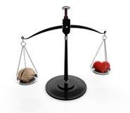 Εγκέφαλος και καρδιά απεικόνιση αποθεμάτων