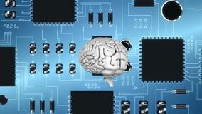 Εγκέφαλος και ψηφιακό κύκλωμα απεικόνιση αποθεμάτων